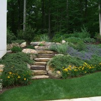 This hillside in North Stamford creates a colorful frame around the pool area.  Filled with creeping juniper, 'Walker's Low' Nepeta,  'Stella d'Oro' daylilies, and Spirea 'Anthony Waterer', this plant material stands up to the full sun exposure and requires very little maintenance.