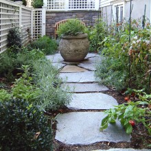 This herb/vegetable garden in Old Greenwich is enhanced by the rustic path constructed of irregular fieldstone stepping stones set in mulch.
