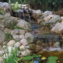 In Old Greenwich, CT, we designed and created this natural looking water feature along the back terrace of the residence.