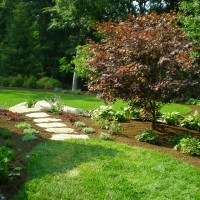 Foliage color creates interest – as this garden demonstrates.  Even newly planted, this beautiful transitional garden in New Canaan, shows how much foliage color can add to visual interest and beauty in the landscape.
