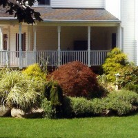 This is another view of the landscaping plantings at the previous residence.